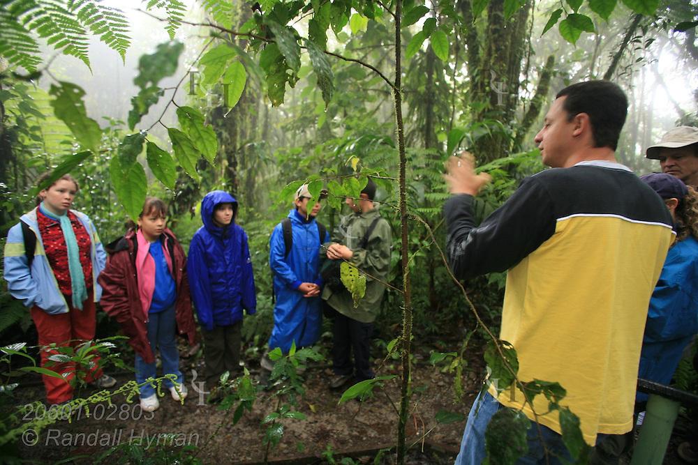 Ecoteach guide Alex Alvarez Rojas leads a nature hike in the cloud forest of Santa Elena National Park, Costa Rica.