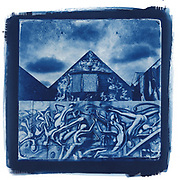 Alt Process - Cyanotypes
