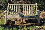 Lichen Bench