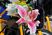 Flowers decorate the front of a Tugo bicycle on Ride-Out day.