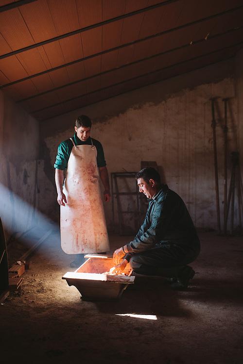 Antonio Blás, Matarife (slaughterman, left) and Cecilio (farm manger) mix Iberico suasage meat and paprika to make Chorizo. Finca Al Cornocal, Extramadura (Barajoz Province), Spain.