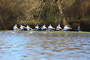 Crew: 37   Op MasD 8+   Reading Rowing Club   RDG-MILHOFER<br /> <br /> Wallingford Head 2017<br /> <br /> To purchase this photo, or to see pricing information for Prints and Downloads, click the blue 'Add to Cart' button at the top-right of the page.