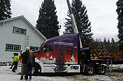 Taking selfies in front of the Whitewood Transport truck that will transport the Capitol Christmas tree to Washington DC. The People's tree is in the background, soon to be cut down after the presentation at the Historic Upper Ford Ranger Station in the upper Yaak Valley. Kootenai National Forest in the Purcell Montains, northwest Montana.