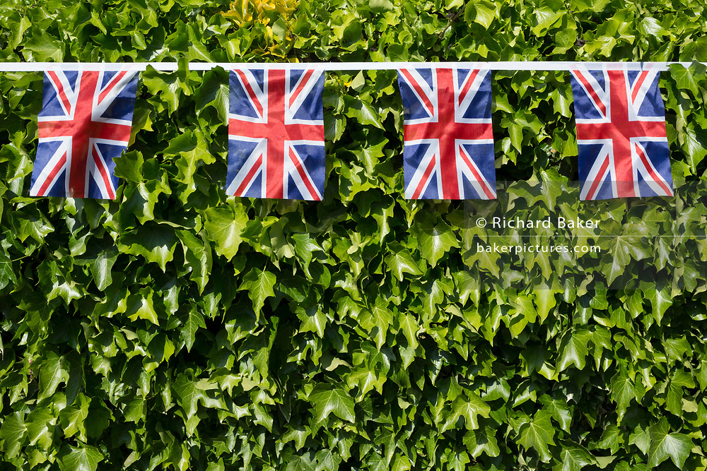 As the Coronavirus lockdown continues over the May Bank Holiday, the nation commemorates the 75th anniversary of VE Day (Victory in Europe Day, the day that Germany officially surrendered in 1945) and in Dulwich, neighbours and residents emerge from their homes to party while still observing social distancing rules. Union Jack bunting hangs across a residential hedge, on 8th May 2020, in London, England.