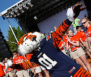AUBURN, AL - APRIL 20:  Auburn mascot Aubie throws a roll of toilet paper at the Auburn Oaks during the Toomer's Corner Celebration on April 20, 2013 in Auburn, Alabama.  (Photo by Mike Zarrilli/Getty Images)