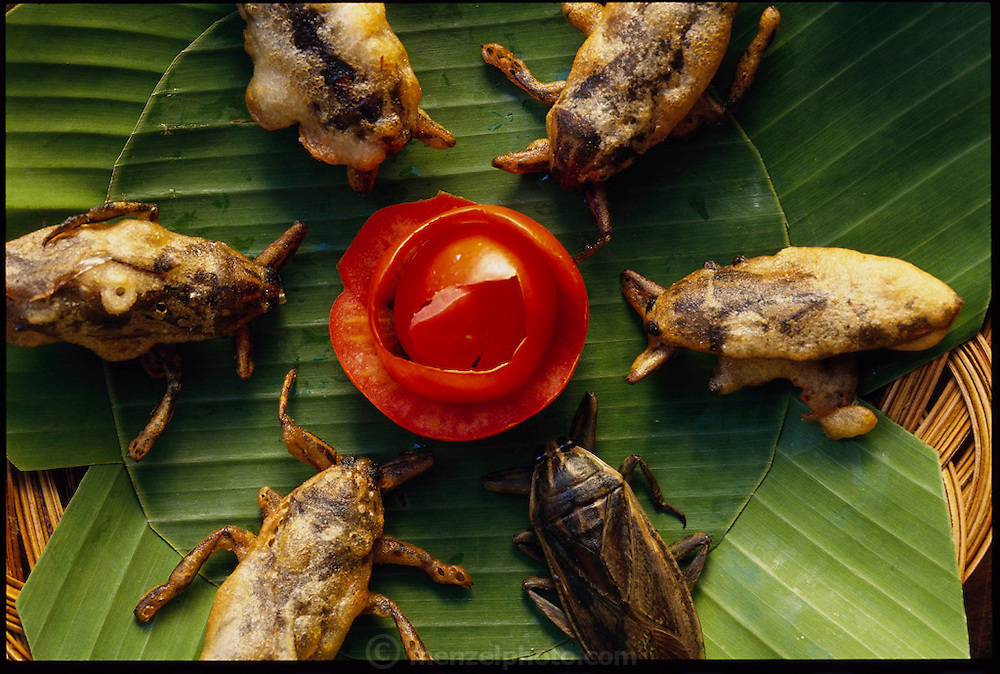Deep-fried giant water bugs with a sculpted tomato garnish in a restaurant in northern Thailand. (page 39 Inset. See also page 7)