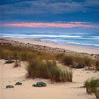 Landscape, Seascape
