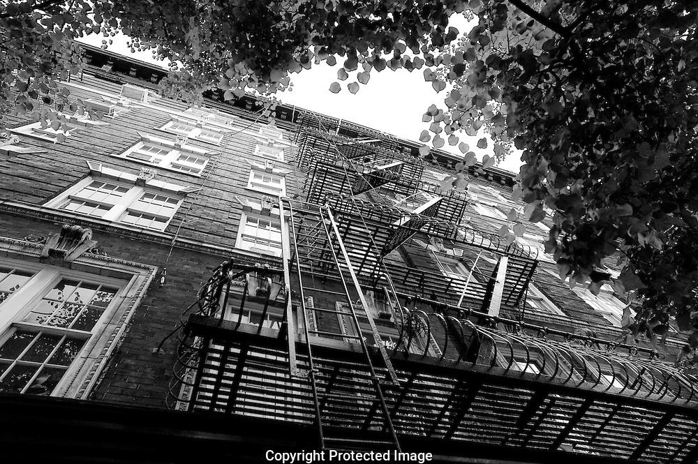 New York New York Cityscape
