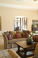 Sofa with cushions and wooden coffee table