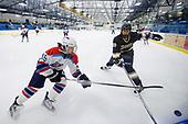 Essex vs. CVU-MMU Girls Hockey 12/13/17