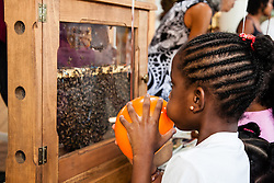 "Je'Synia Lloyd, 7 keeps an eye on the observation bee hive.  The VI Department of Agriculture hosts the second annual Fresh Beekeeping ""Buzzaar on St. Thomas.  The event which provided education and outreach featured an observation bee hive, and byproducts of hive production including soaps, balms, wines, candles, and beekeeping supplies.  Tutu Park Mall.  22 September 2012.  © Aisha-Zakiya Boyd"