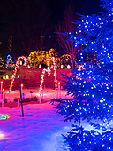Holiday Lights, Janesville Rotary Gardens, Janesville, Wisconsin
