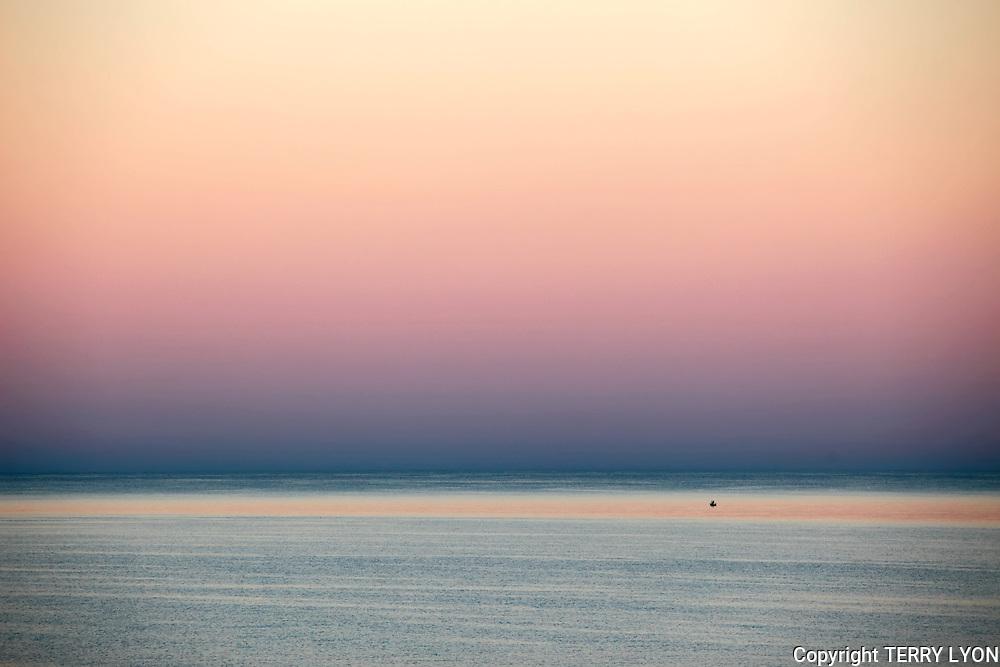 Morning Light Cottesloe