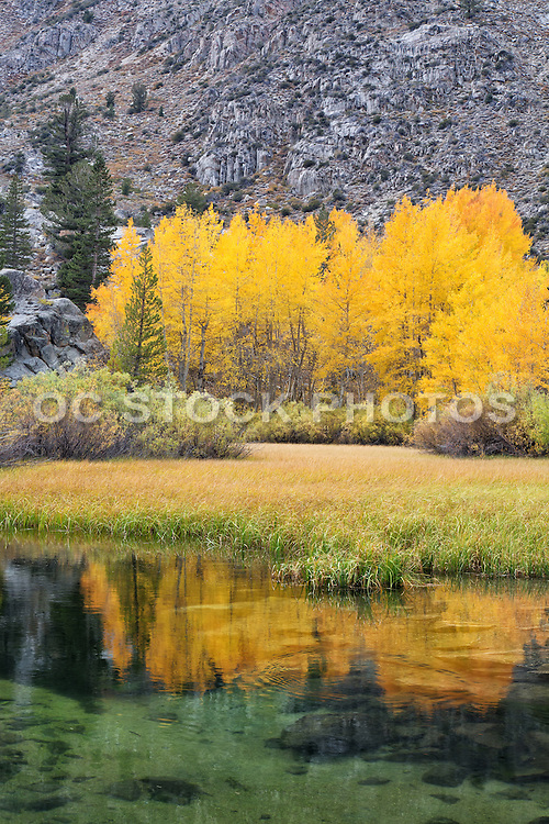 North Lake at Fall in the Inyo National Forest