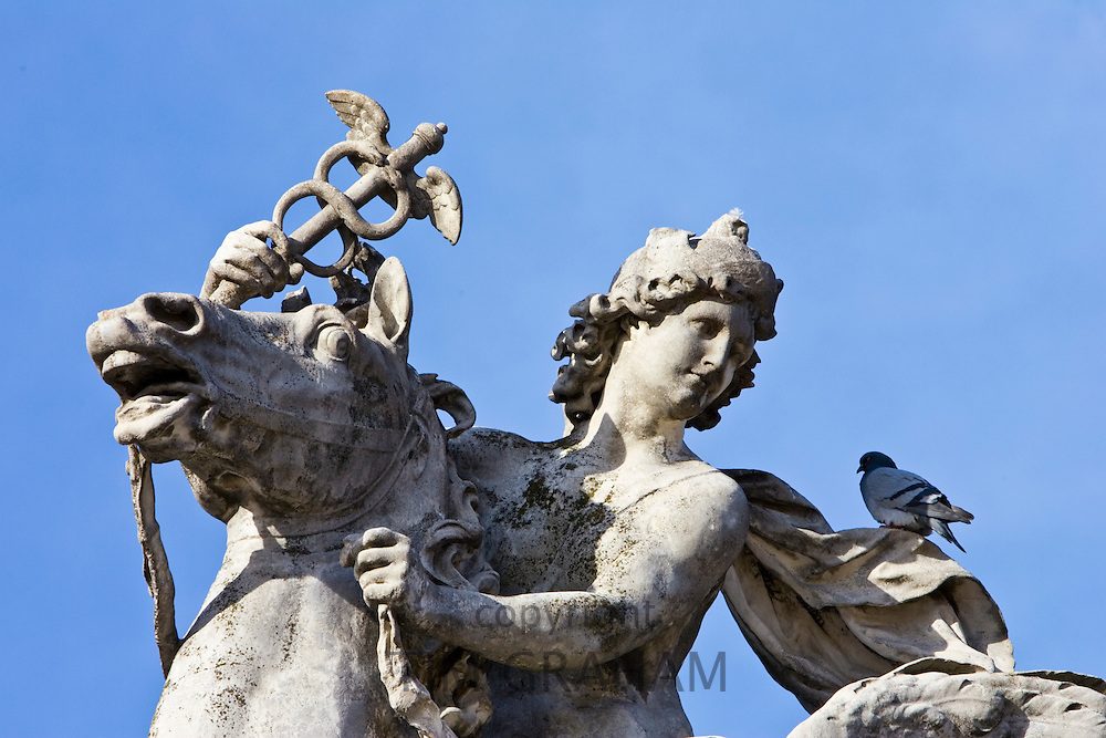 Pigeon rests on horse and rider statue in Place de la Concorde, Paris, France