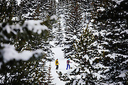 Broome Hut Trip<br /> January 2017<br /> <br /> <br /> www.AdamAlexanderPhoto.com<br /> &copy;Adam Alexander Photography 2017