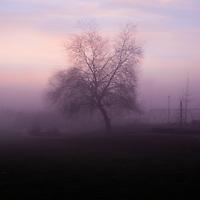 A foggy sunrise in a school yard playground.