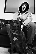 A youth wearing a hoodie with his Pit Bull Terrier dog at home, London UK 2006