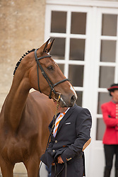Andrew Heffernan, (NED), Boleybawn Ace - First Horse Inspection  - Alltech FEI World Equestrian Games™ 2014 - Normandy, France.<br /> © Hippo Foto Team - Dirk Caremans<br /> 25/06/14