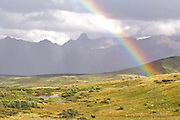 Rainbow over Alaska Range from Sable Pass, Denali National Park, Alaska. Digital original ©Robin Brandt #06_2788
