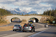 Wildlife overpass across busy highway, Banff National Park, Canada