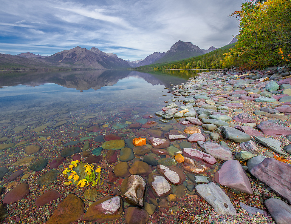 Multi-colored rocks along the edge of Lake McDonald on the shore and under the water line for as far as the eye cans see to the Continental Divide and the Crown of the Continent with fall colors and light wispy clouds in a blue sky