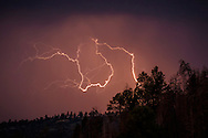 Lightning in sky above ponderosa pine forest, Jemez Mountains, NM, © 2015 David A. Ponton