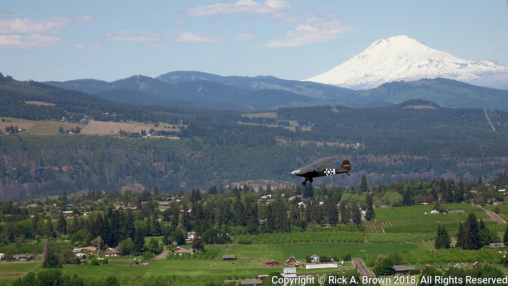 L-Birds flying around Hood River.
