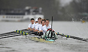Putney, GREAT BRITAIN,  Cambridge, settling into a rythem as they move along the Fulham wall in the opening stages of the  annual  Boat Race,  Oxford vs Cambridge raced over the 'Championship Course' Putney to Mortlake, on the River Thames, Sat 29.03.2008  [Mandatory Credit, Peter Spurrier / Intersport-images Varsity Boat Race, Rowing Course: River Thames, Championship course, Putney to Mortlake 4.25 Miles,