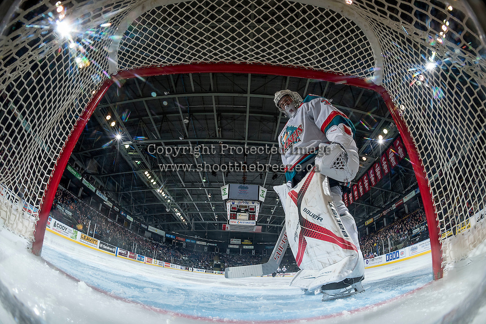 KELOWNA, CANADA - FEBRUARY 22: Brodan Salmond #31 of the Kelowna Rockets stands in net against the Edmonton Oil Kings on February 22, 2017 at Prospera Place in Kelowna, British Columbia, Canada.  (Photo by Marissa Baecker/Shoot the Breeze)  *** Local Caption ***