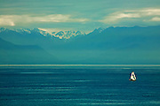 Sailboat on harbor before the Olympic Mountains, Victoria, British Columbia