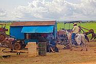 Farming in Las Coloradas, Granma, Cuba.
