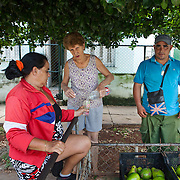 Cuban government  is allowing private business to flourish. This couple sells fresh vegetables house to house.<br /> Photography by Jose More