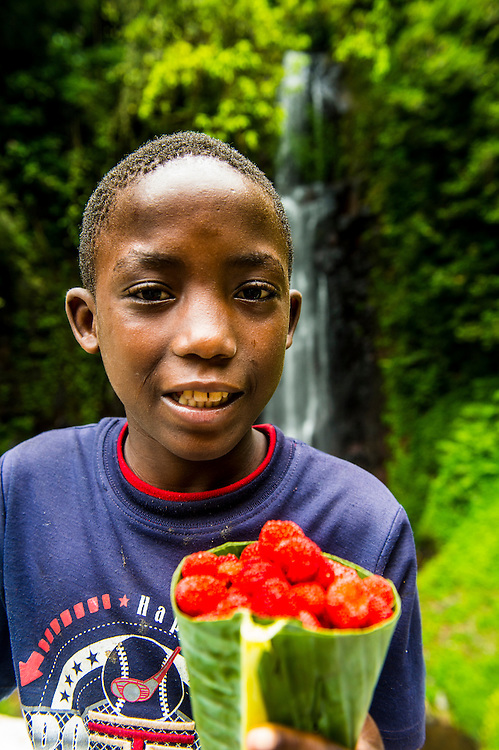 Boy selliing wild rasberrys before the waterfall of Sao Nicolau in the jungle of Sao Tome, Sao Tome and Principe, Atlantic ocean