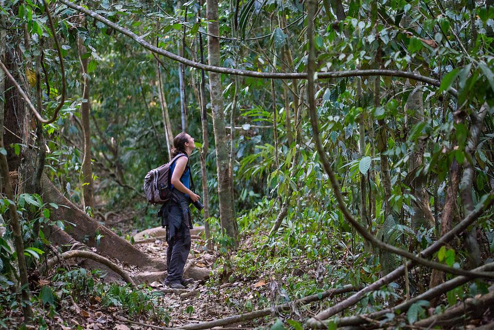 Woman hiking in tropical rainforest, Taman Negara National Park, Malaysia