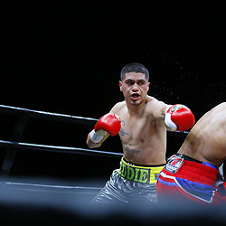 A Premier Boxing Champions bout featuring super lightweights, Eddie Ramirez versus Argenis Mendez on Saturday, May, 26, 2017 at the Beau Rivage Casino and Resort in Biloxi, Mississippi. Photo by: Derick E. Hingle/Premier Boxing Champions