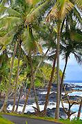 Puna coastline, Big Island of Hawaii