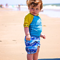 Nils Byg roaming the beach looking for things to eat.