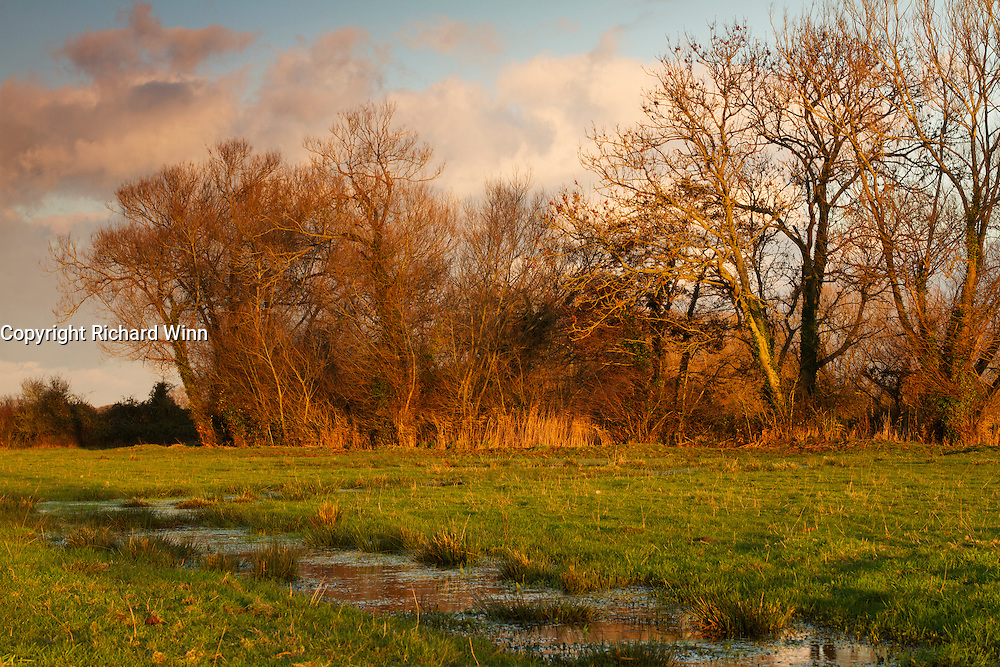 The Meads near Durleigh, Bridgwater in late afternoon. Part of the Somerset Levels, the fields still show evidence of the prolonged heavy rain a coupld of weeks earlier
