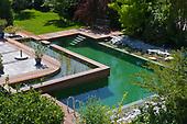 Natural Pool 926