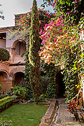 Garden in the historic district Oaxaca, Mexico.