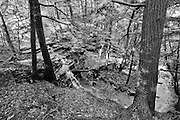 Hemlock Lake, NY.<br /> This feeder creek to Hemlock Lake follows the Livingston County line. It flows through a lovely forest in western New York.  At this fifty foot drop over a shale staircase, there are a lot of big hemlocks and a fairly open understory.  In this case I liked the black &amp; white conversion, so I stayed with that rather than a color image.