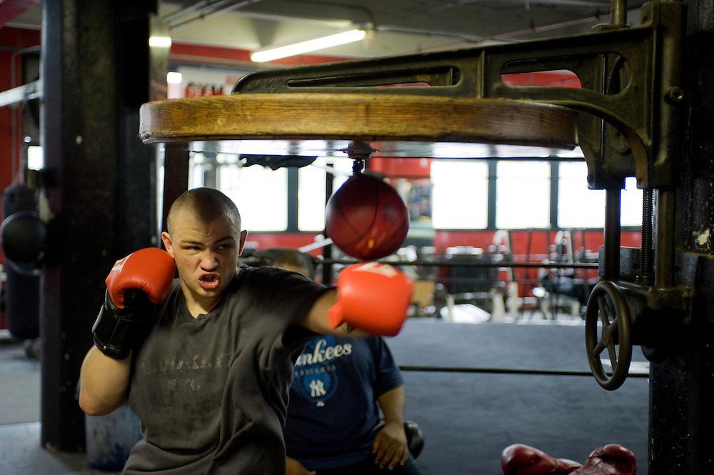 Gleason's Gym, Dumbo, Brooklyn, New York.Golden Glove Boxer Adam Kownacky (20) 235 pounds ..