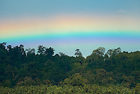 Rainbows are frequent sights over the rainforest canopy behind Sawai village, Seram, Indonesia. Travel phtoography by Djuna Ivereigh.