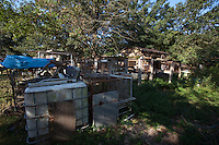 A section of property during a raid on a puppy mill in Johnston, SC on Tuesday, Sept. 11, 2012. HSUS workers found over 200 dogs, nine horses and 30-40 fowl.