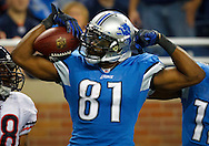 Detroit Lions wide receiver Calvin Johnson (81) (AP Photo/Rick Osentoski)