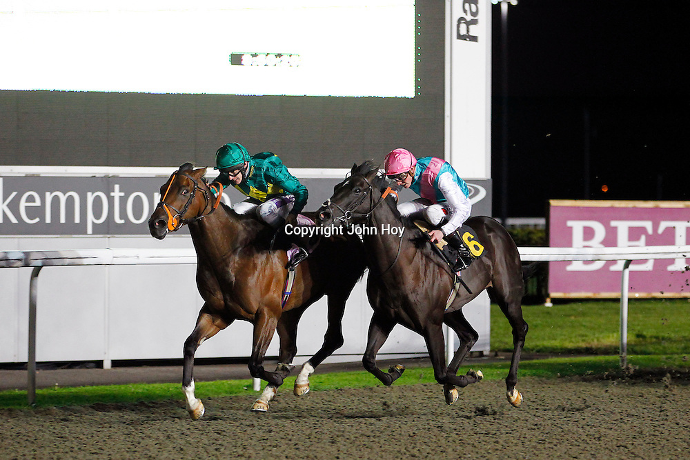 Trinityelitedotcom and Richard Kingscote winning the 8.45 race