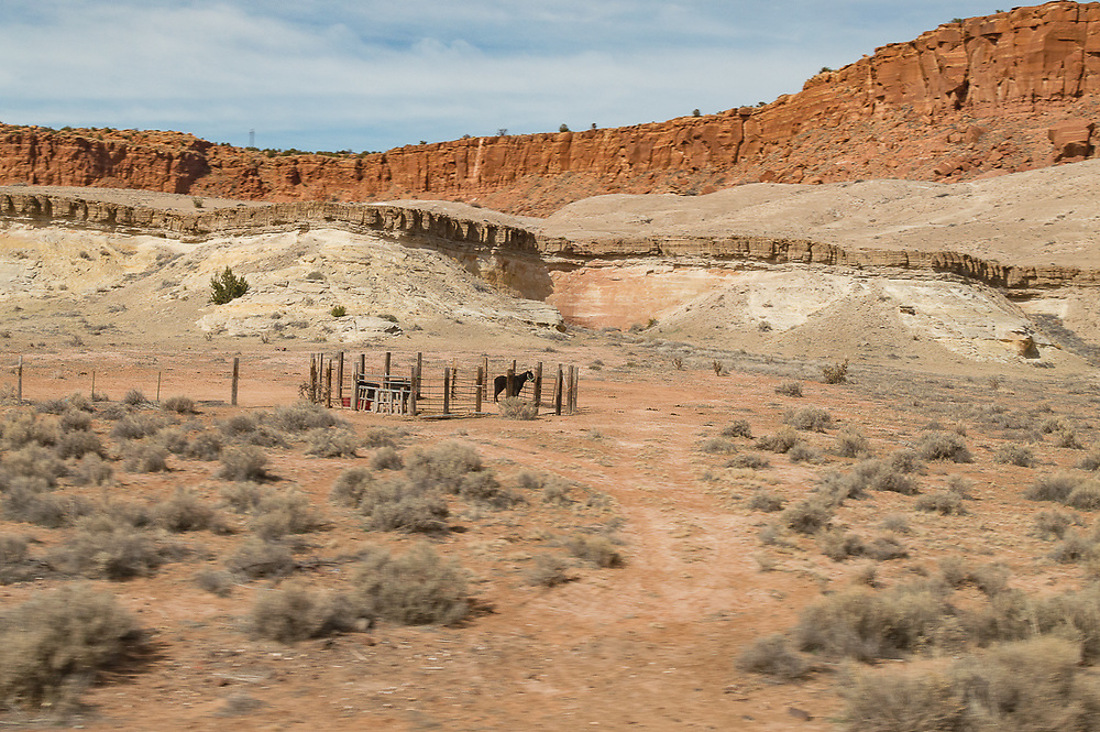 Lone horse in a corral surrounded by red and white rocks in the desert canyon landscape.