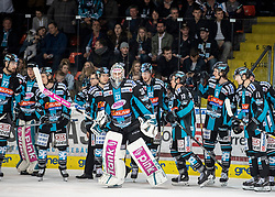 24.03.2019, Keine Sorgen Eisarena, Linz, AUT, EBEL, EHC Liwest Black Wings Linz vs Moser Medical Graz 99ers, Viertelfinale, 6. Spiel, im Bild Tormann David Kickert (EHC Liwest Black Wings Linz) Linz verliert das Viertelfinale // during the Erste Bank Icehockey 6th quarterfinal match between EHC Liwest Black Wings Linz and Moser Medical Graz 99ers at the Keine Sorgen Eisarena in Linz, Austria on 2019/03/24. EXPA Pictures © 2019, PhotoCredit: EXPA/ Reinhard Eisenbauer