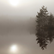 Lake, Etangs de la Colombière, with mist and some sunlight. A little island with trees with reflection in the water,